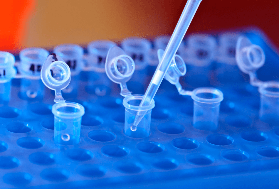 Genetics Research on Addiction Treatment